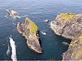 Sea stack at Lecknacurra - geograph.org.uk - 1394336.jpg