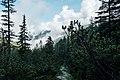 Sentiero Gunther-Messner.jpg