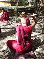 Sera Monastery (23409830499).jpg