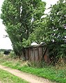 Shed among trees - geograph.org.uk - 1413227.jpg