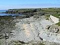 Shingle Beach - geograph.org.uk - 549854.jpg