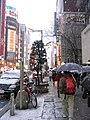 Shinjuku.snow.ST.jpg