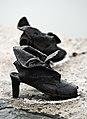 Shoes Danube Promenade IMGP1282.jpg