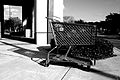 Shopping Cart (3087215549).jpg