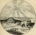 Silenus Alcibiadis, sive, Proteus - vitae humanae ideam, emblemate trifariàm variato, oculis subijciens (1618) (14561716517).jpg