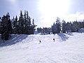 Skiing (30125848).jpg