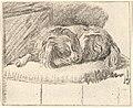 Sleeping Dog MET DP828335.jpg