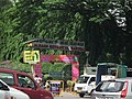 Snap from Lalbagh Flower Show Aug 2013 7786.JPG
