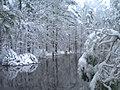 Snow Storm,Missy's Pond - panoramio.jpg