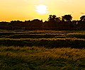 Sonnenuntergang (9280058276) (2).jpg