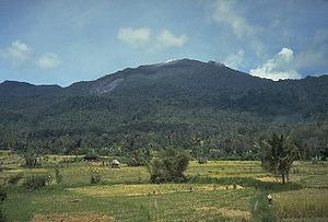 Batang Gadis National Park - Sorikmarapi vulcano, the highest point in the national park.