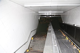 The entrance stairway of the South Ferry Subway Station shortly after Hurricane Sandy can be seen. Floodwater can be seen partly down the stairway. Floating on the floodwater is several leaves and other debris. The camera is facing downwards towards the floodwater.