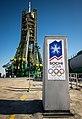 Soyuz TMA-11M Launch Pad.jpg