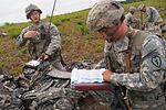 Spartan paratroopers practice combat jump 140723-F-LX370-897.jpg