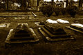 Spooky Graves.jpg