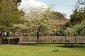 Spring in Epsom (7126095991).jpg
