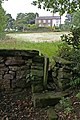 Squeeze Stile - geograph.org.uk - 548432.jpg