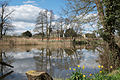 St. Peter's Church across the lake at Coughton Court.jpg