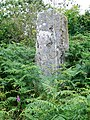 Standing stone - geograph.org.uk - 501800.jpg