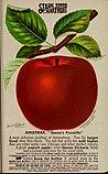 Stark fruits (1896) (20356831980).jpg