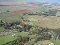 Starr-091217-0682-Livistona chinensis-aerial view habitat view Veterans Cemetery-Makawao-Maui (24365510253).jpg