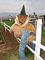 Starr-111004-0589-Cucurbita pepo-halloween scarecrow-Kula Country Farms-Maui (24491568653).jpg