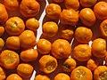 Starr-130113-1431-Citrofortunella microcarpa-fruits on plate-Hawea Pl Olinda-Maui (24908847160).jpg