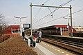 Station Alkmaar Noord perrons.jpg