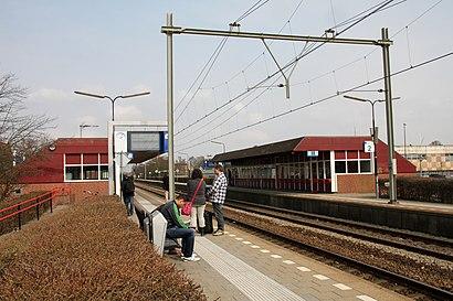 So kommt man zu Station Alkmaar Noord mit den Öffentlichen - Mehr zum Ort Hier