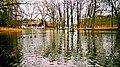 Staw parkowy w parku pałacowym w Żaganiu.jpg