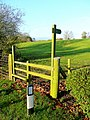 Stile by Springetts Lane - geograph.org.uk - 1585275.jpg
