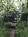Stile on coast path - geograph.org.uk - 818863.jpg