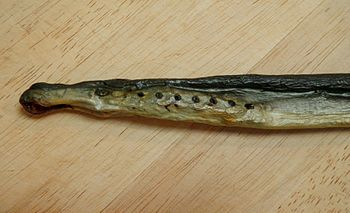 Stockfish of arctic lamprey (Lethenteron japonicum).jpg