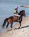 Strandgalopprennen, Wustrow (P1080196).jpg