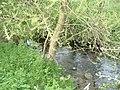 Stream, Swan's Way - geograph.org.uk - 161689.jpg