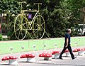 Street Scene with Bicycle and Mushrooms - Tirana - Albania (28904302448).jpg