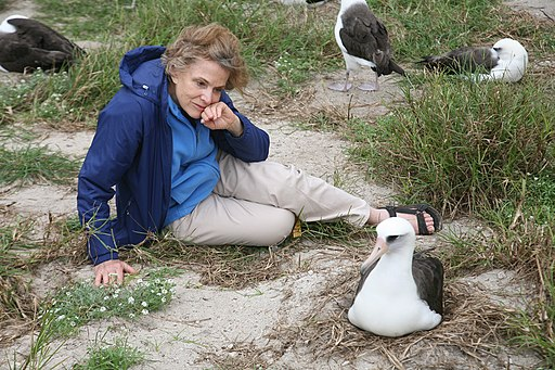 Sylvia Earle and Wisdom the Albatross (6741930627)