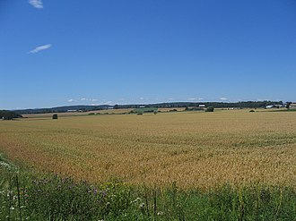 Geography of Norway - Landscape with grainfield in Tønsberg, southeastern Norway.