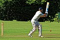 Takeley CC v. South Loughton CC at Takeley, Essex, England 033.jpg