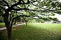 Taoyuan, Taoyuan District, Taoyuan City, Taiwan - panoramio (11).jpg