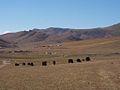 Terelj National Park, Mongolia (11441630236).jpg