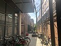 Teylers Museumcomplex achterzijde binnensteeg.jpg