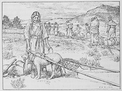 The American Indian Fig 11.jpg