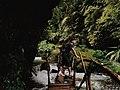 The Beautiful Path to Waterfall.jpg