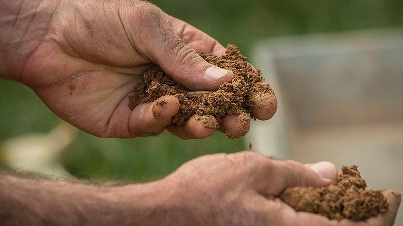 https://upload.wikimedia.org/wikipedia/commons/thumb/0/03/The_Bundled_Benefits_of_Soil_Health_37.jpg/800px-The_Bundled_Benefits_of_Soil_Health_37.jpg