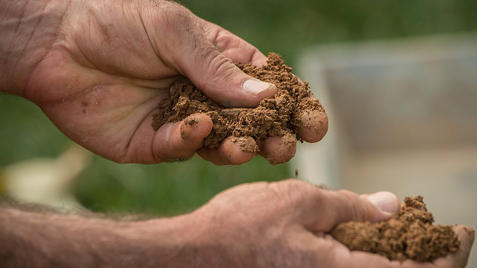 The Bundled Benefits of Soil Health 37.jpg