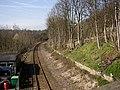 The Huddersfield and Penistone Line, Berry Brow, Almondbury - geograph.org.uk - 392093.jpg