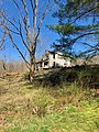 The Old Shelton Farmhouse, Speedwell, NC (47379133422).jpg
