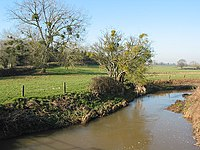 The River Leadon from Wedderburn Bridge - geograph.org.uk - 685717.jpg