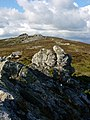 The Stiperstones - geograph.org.uk - 7117.jpg